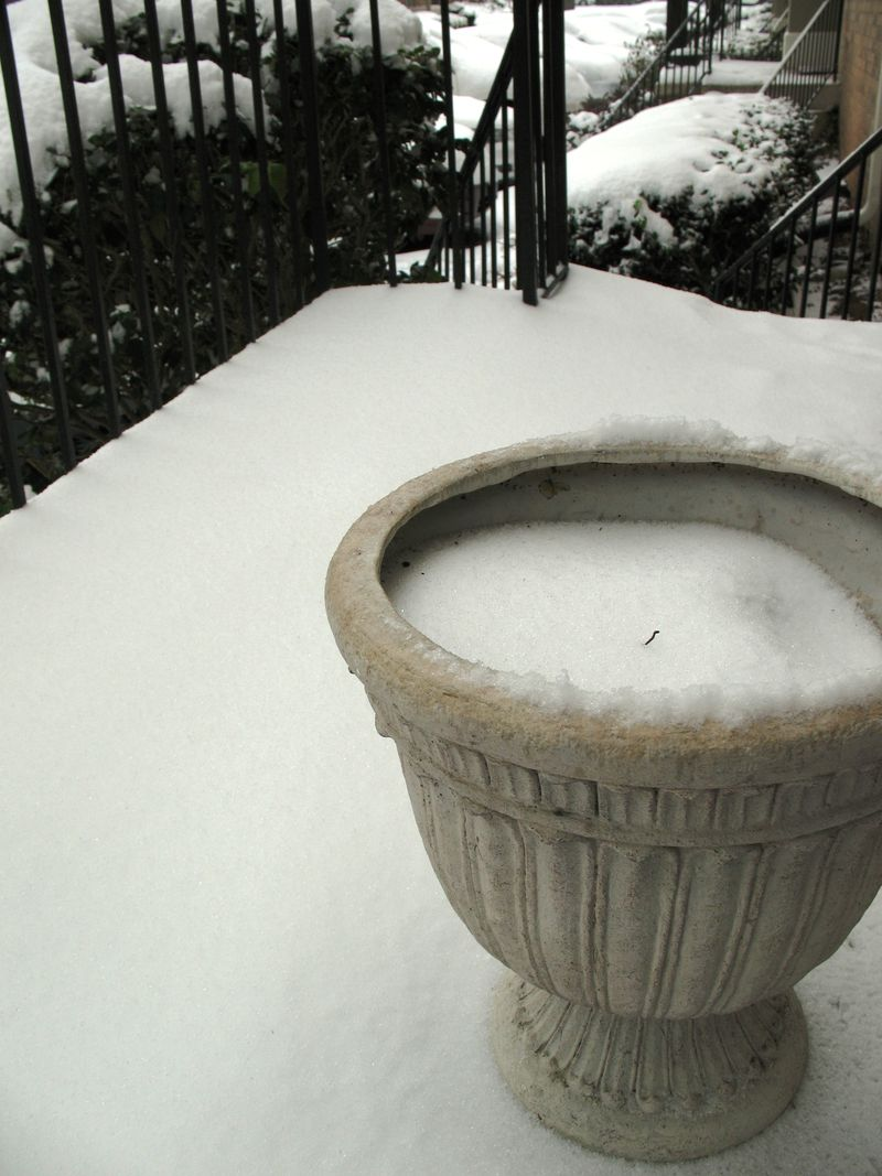 Snow_front_porch